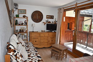 Location Cosy - grand balcon plein sud photo 1