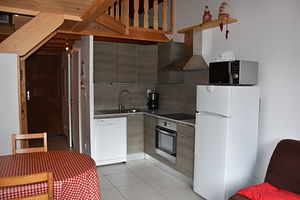 Location Beau studio mezzanine - terrasse  plein sud photo 2