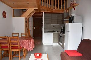 Location Beau studio mezzanine - terrasse  plein sud photo 3